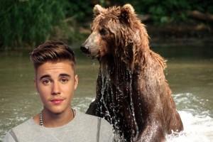 BieberBear