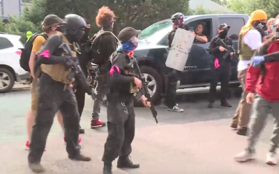 VIDEO: Protestors armed with AR-15s invade neighborhood, harass residents